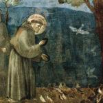 Realismo e gioia. Omaggio a papa Francesco