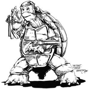 prime-tartarughe